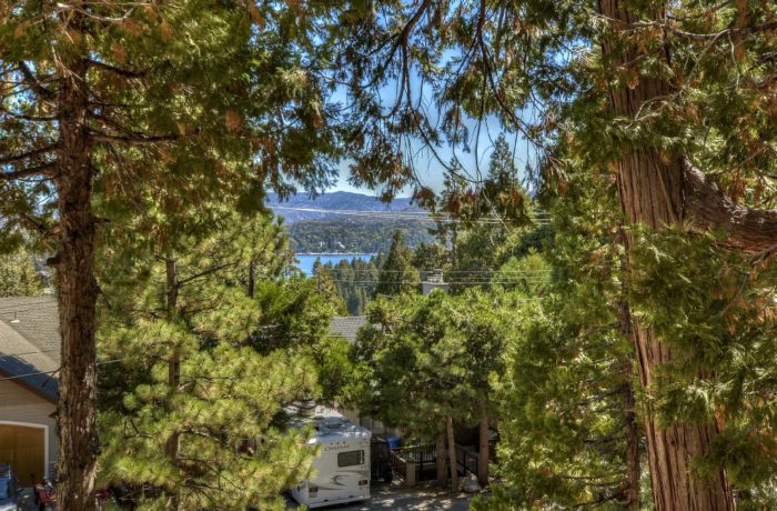 788 Zurich ~Lake Arrowhead
