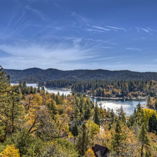 27613 Alpen Dr ~Lake Arrowhead